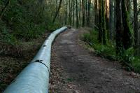 pipe running along trail