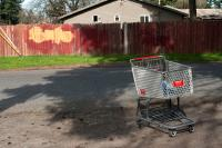 shopping cart and wooden fence
