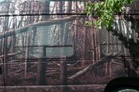 image of trees on a vehicle