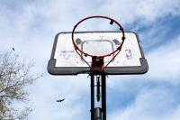 basketball hoop with crows in the background