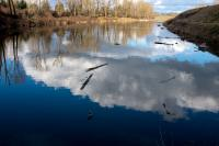Reflection in the Columbia Slough