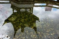 reflection in Chinese Garden