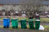 Recycle and yard debris containers lined up