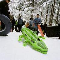 Blowup alligator at Mt Tabor