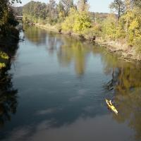 Kayaker on Columbia Slough